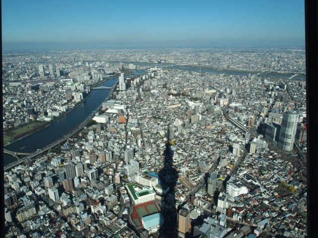 Lunch View from Tokyo Tower